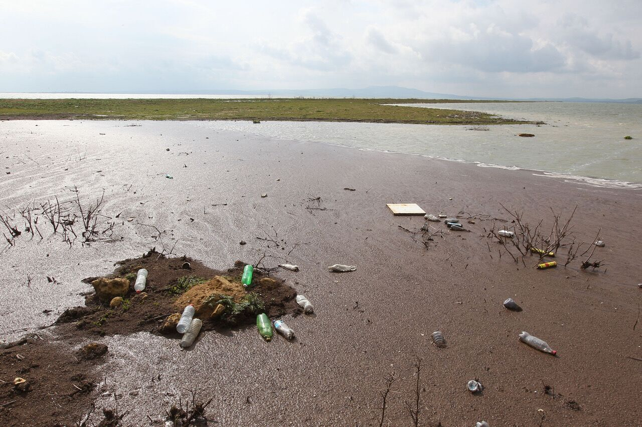 RE-1-REG: Phasing out single-use plastics in the Mediterranean
