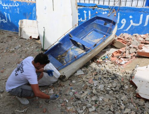 Combatting marine litter in Algeria