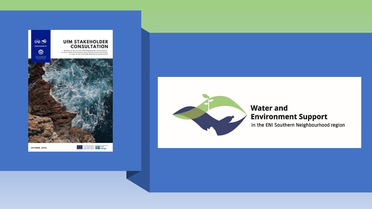 Union for the Mediterranean Online Stakeholder Consultation