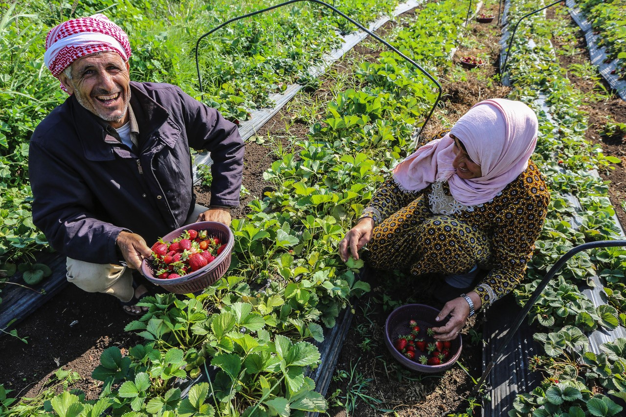 N-W-PS-2: Capacity building/trainings with pilot farmers' associations and relevant communities on optimal irrigation management and practices