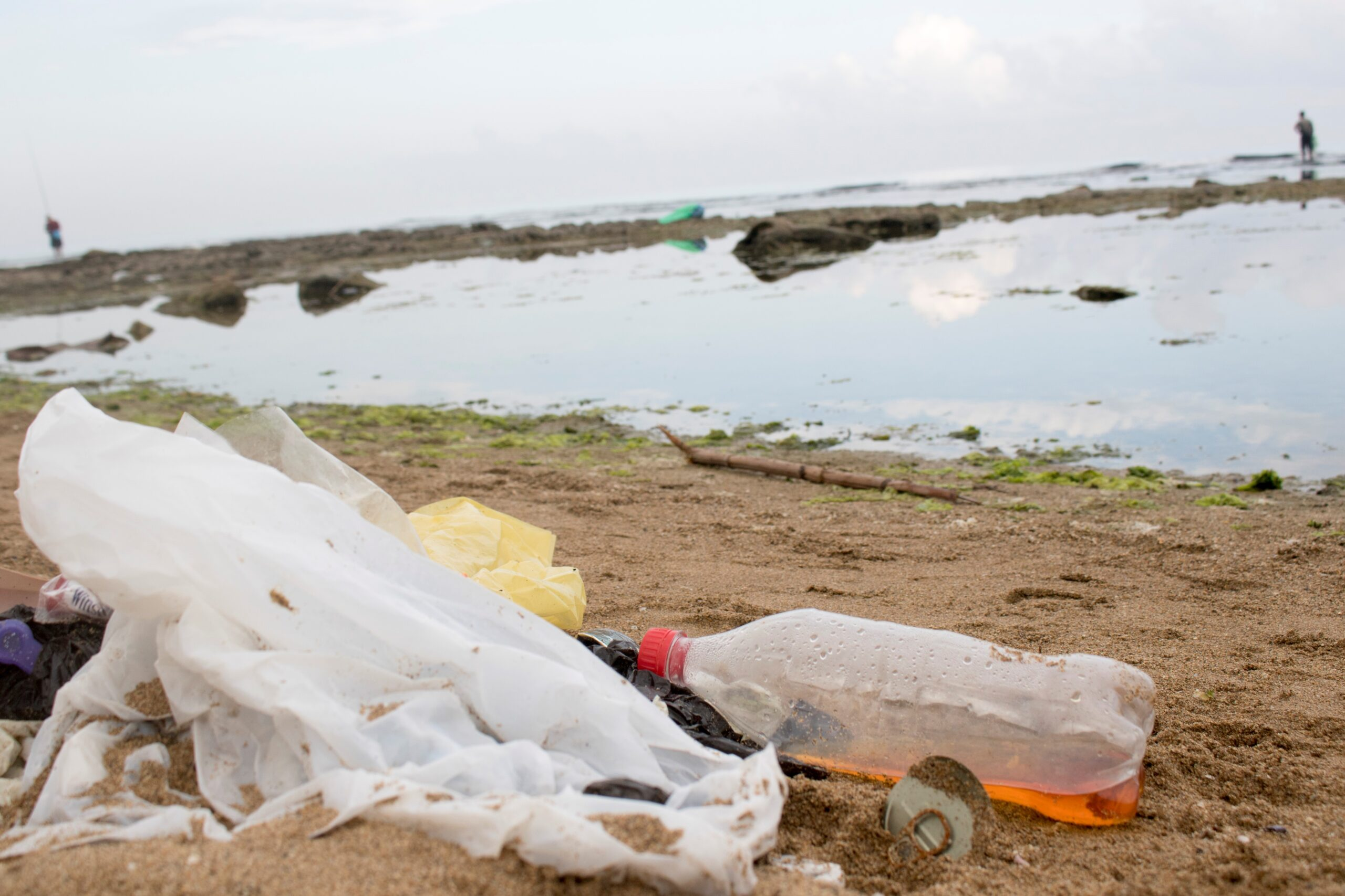 RE-1-P2P: Phasing out single-use plastics in the Mediterranean