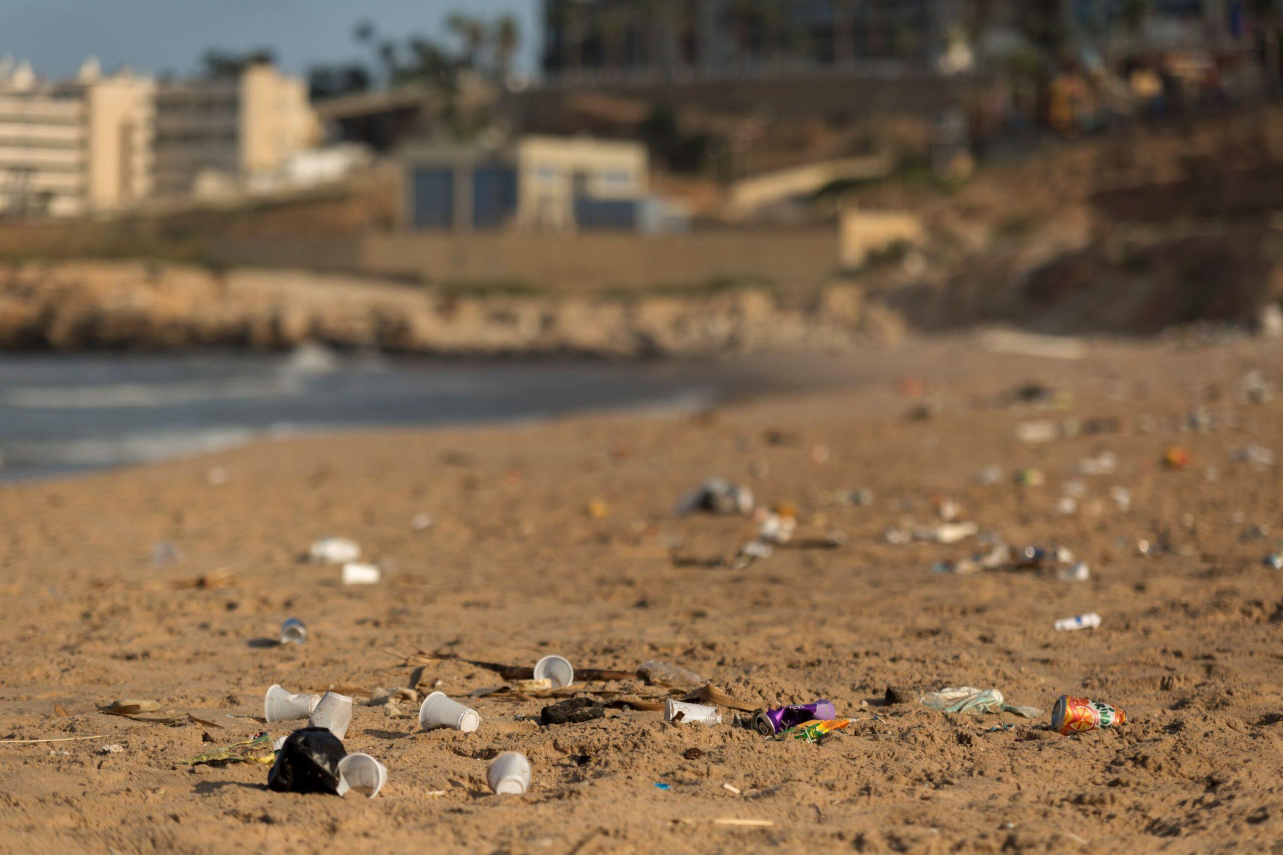 WES Plastics Pollution-Marine Litter 3